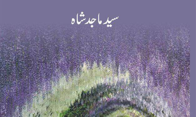 Dur-e-Shahi