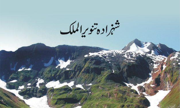 Morkho Tareekh key Aaienay Mein