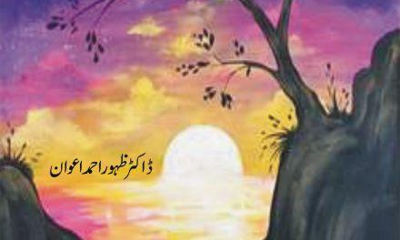 Nazr-e-Nazeer